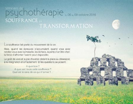 Séminaire de psychothérapie : souffrance et transformation